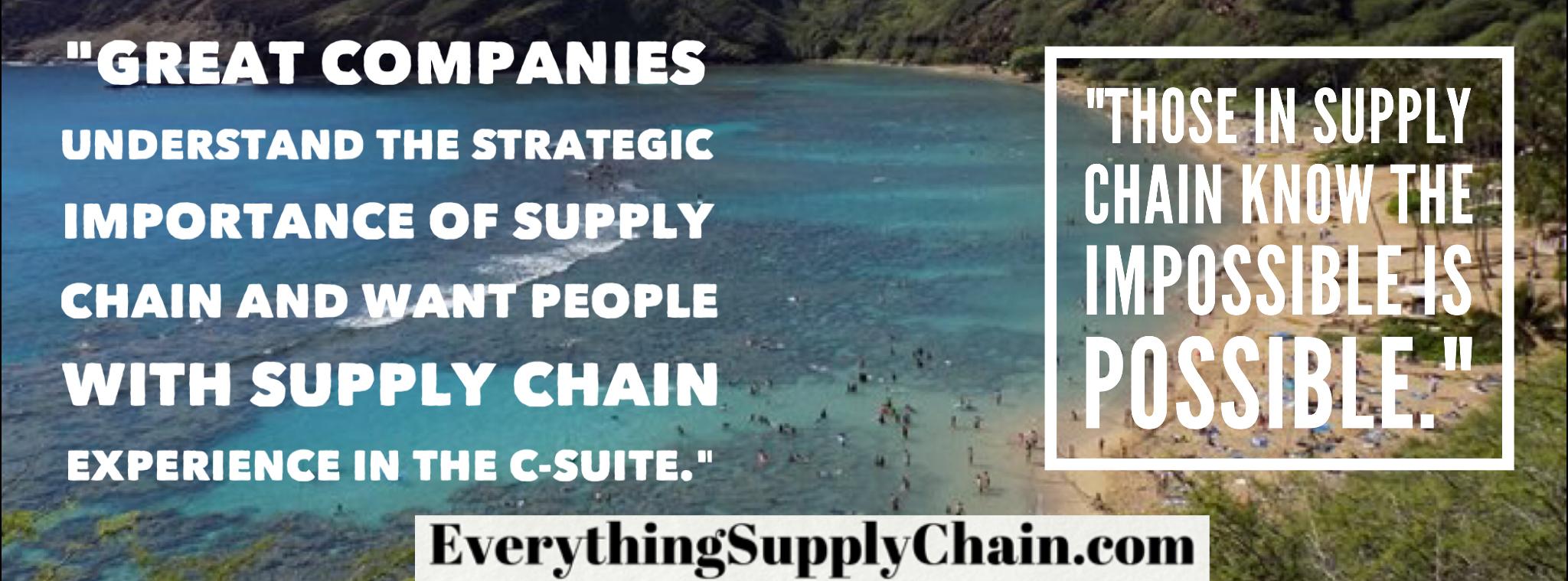 world class supply management pdf