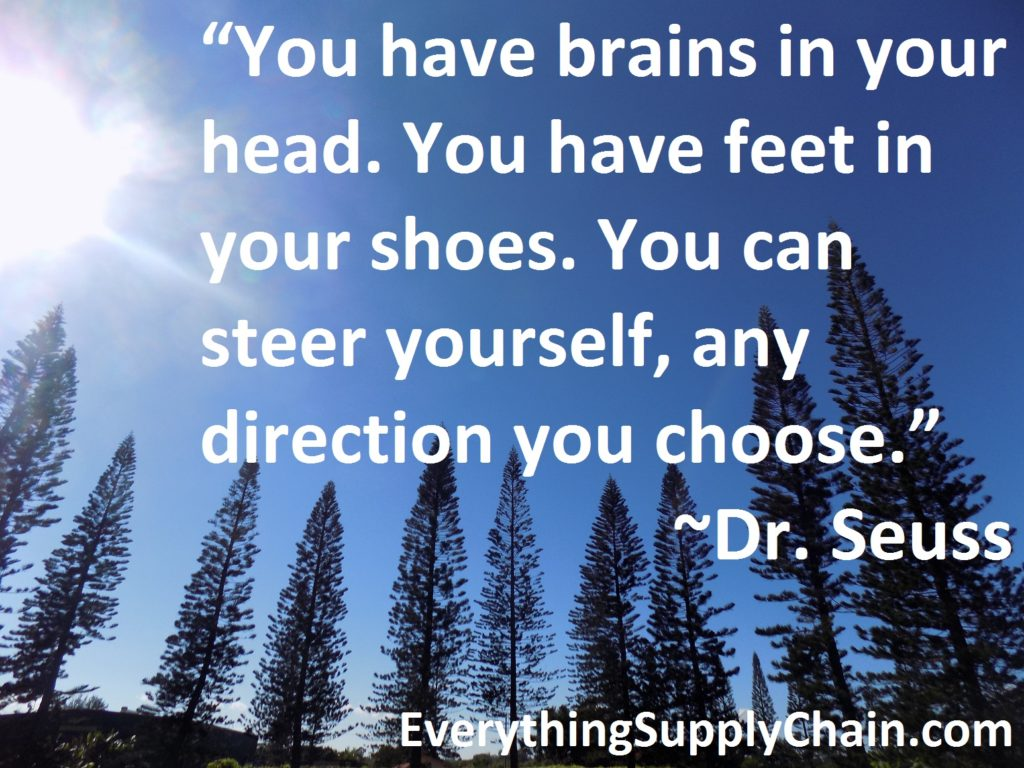 Leadership Lessons from Dancing Guy Dr. Seuss supply chain