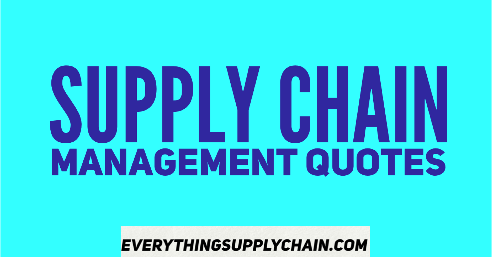 Supply Chain Management Quotes -