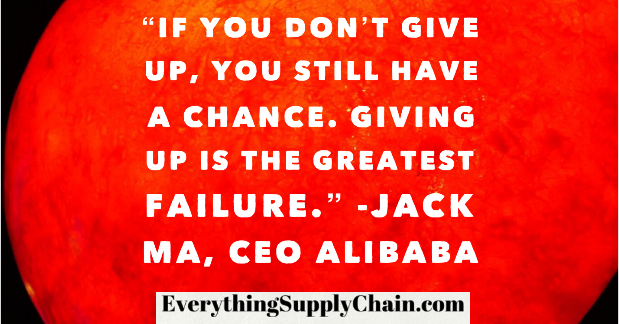 The Alibaba Supply Chain