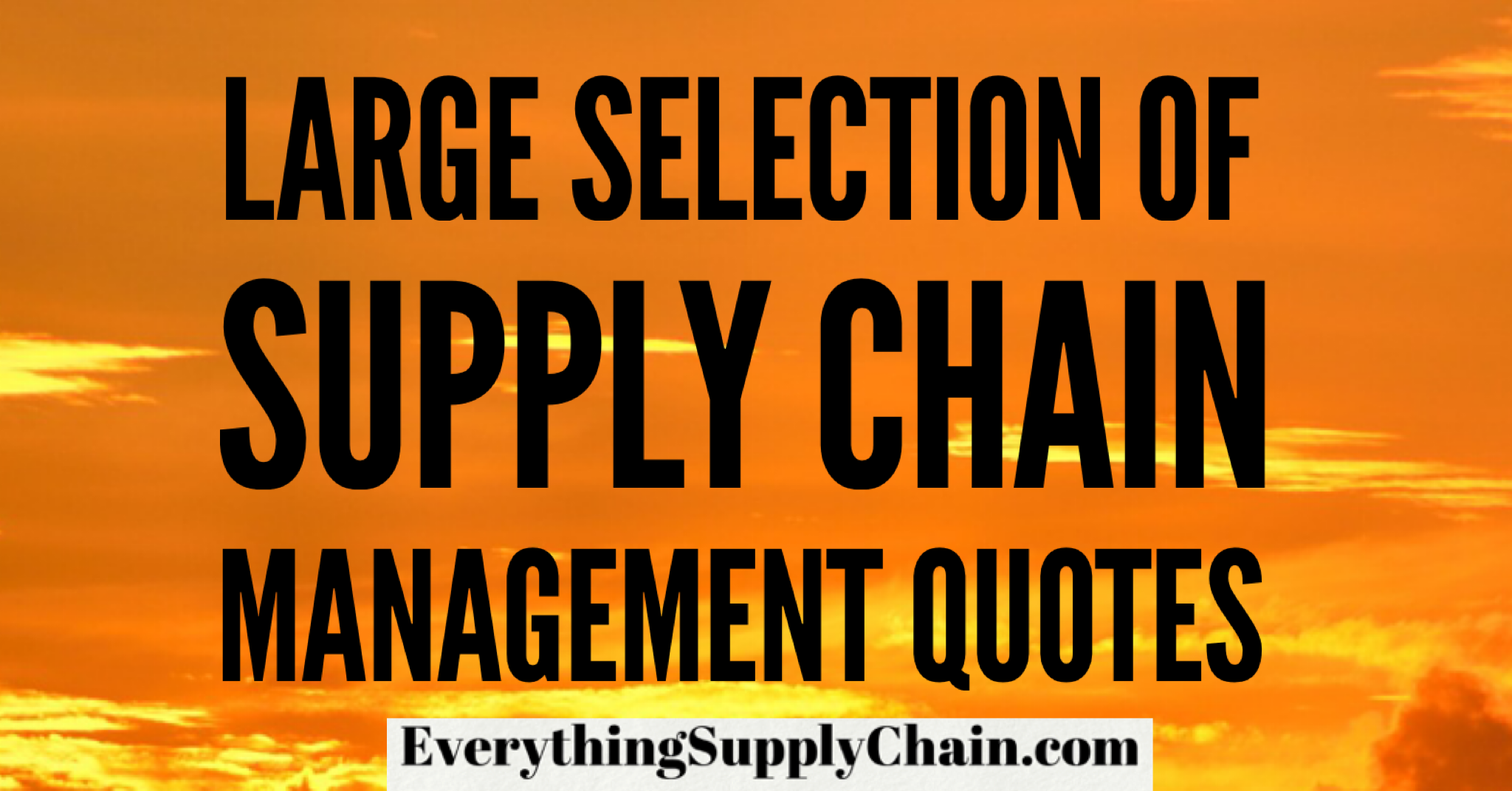 Supply Chain Management Quotes